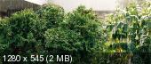 Сайлент Хилл / Silent Hill [2006 г., Ужасы, триллер, фэнтези, мистика]  HD-DVDRip 720p