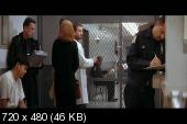 ������ �������� / Conspiracy Theory (1997) DVDRip