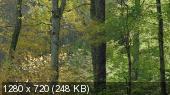 Земля / Earth (2007) BDRip 720p