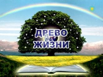 Встреча-презентация технологий Фонда Аркадия Петрова [2010, DVDRip]